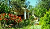 Green Villa & Pink Villa  3-6